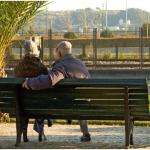 Top Retirement Money Saving Tips For The Average Jo